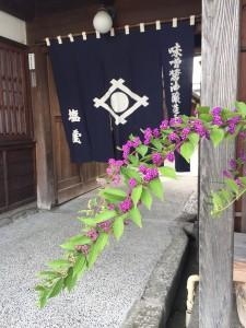 暖簾 紫式部